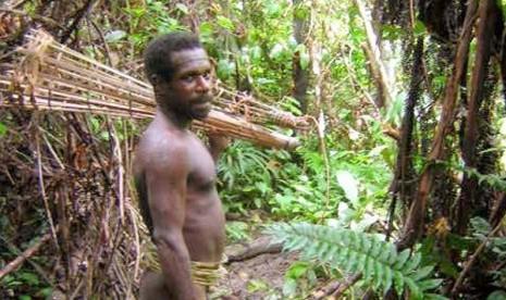 Suku Korowai Papua yang akan punah akibat modernitas (republika.co.id)