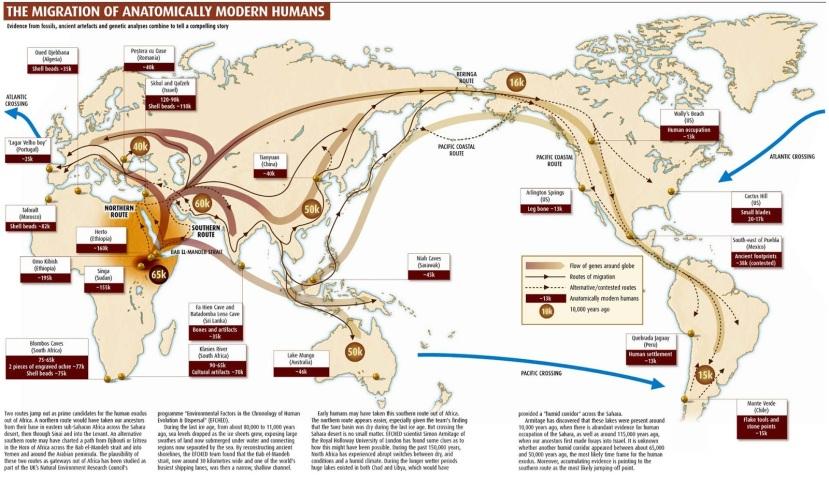 Peta migrasi manusia di seluruh dunia